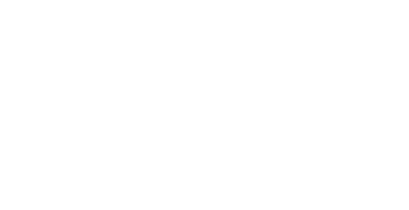 dudley metropolitan borough council header logo