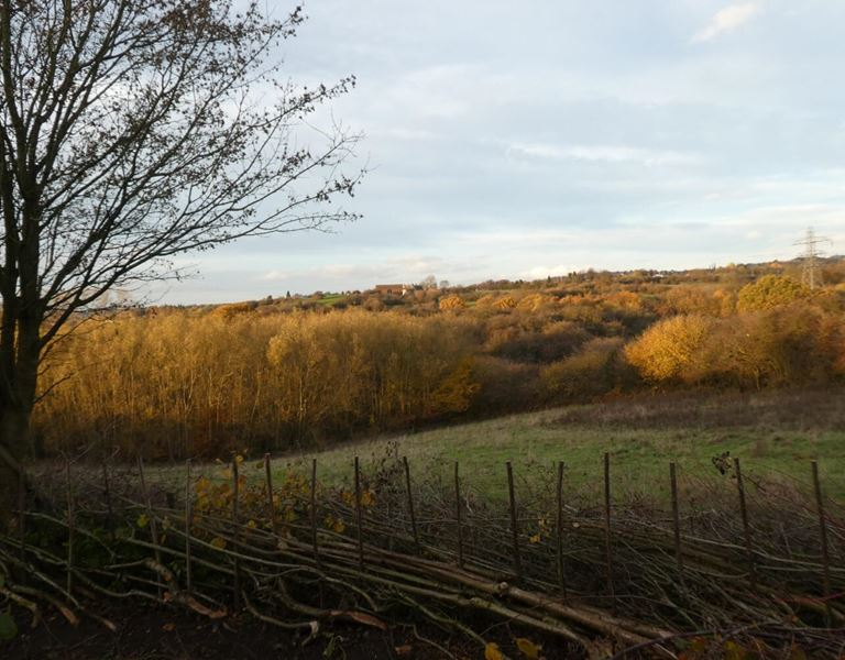 Barrow Hill Scenic Photograph